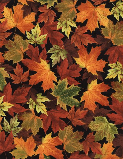 black with orange brown leaf fabric Timeless Treasures - Flower ...
