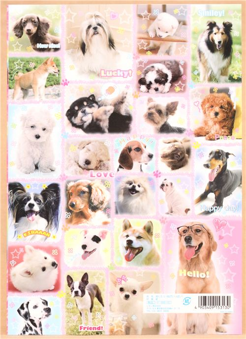 Cahier 224 Dessins Et De Coloriages Avec D Adorables Chiens
