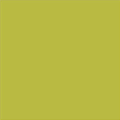 Green Laminate: Solid Lime Green Riley Blake Laminate Fabric USA